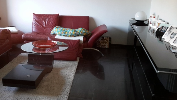 Krümel schläft auf dem Sofa